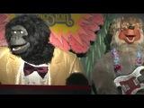 The Rock-afire Explosion - Cajun Medley