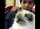 Instagram video by 이종현 • Jan 31, 2017 at 3:07pm UTC