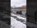 Продолжение видео В Астане машина с людьми упала в реку 2017 год Астана кримина