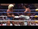 NWA WrestleWar: Ric Flair vs Ricky Steamboat (07.05.1989)
