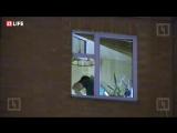 В Москве, уже около четырех часов, мужчина удерживает в заложниках свою жену и детей — прямая трансляция