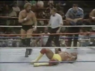 WWF Survivor Series 1988 - Team Hulk Hogan vs Team Ted Dibiase (5-on-5 Survivor Series elimination match)