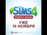 Квартальный тизер The Sims 4