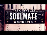 The ultimate Acoustic Guitar Pedal T-Rex Effects SOULMATE Acoustic