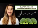 Sulforaphane and Its Effects on Cancer, Mortality, Aging, Brain and Behavior, Heart Disease More