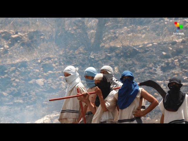 Inside the Hotbeds of Israeli Settler Terror