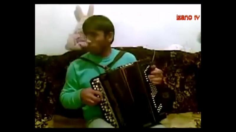 Асильдар Шахбанов поет на баяне mp4