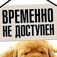 Аватар Дениса Гришина