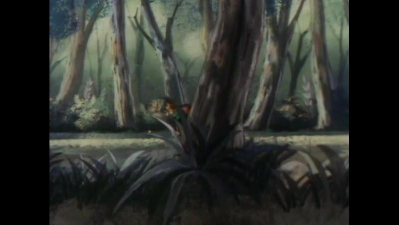 Las aventuras de Pinocho 44 - La vieja Roseta