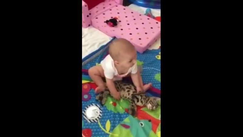 Дівчинка та кіт із найдзвичайним терпінням