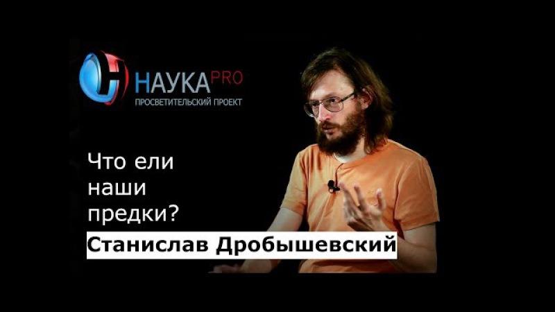 Станислав Дробышевский - Что ели наши предки