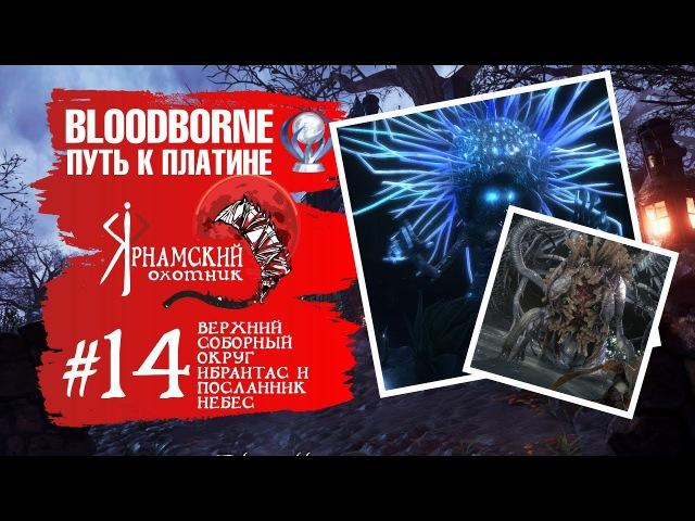 Bloodborne Путь к платине Часть 14 Верхний Соборный Округ Ибраитас Дочь космоса и Посланник небес