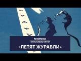 Почему фильм «Летят журавли» — культовый?
