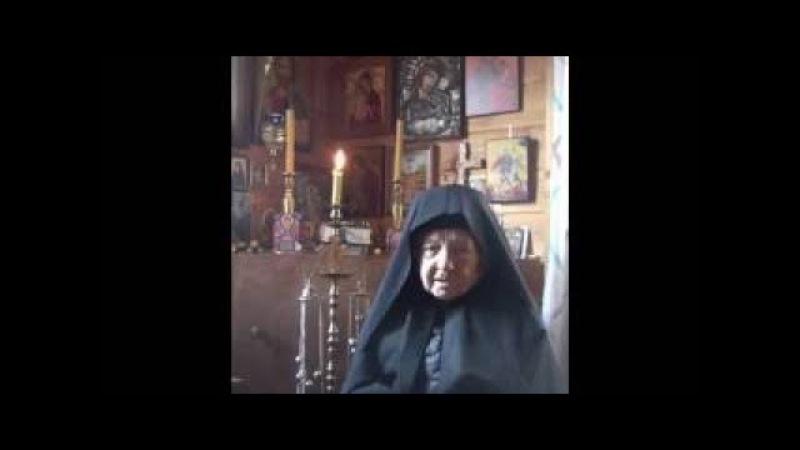Ответы старца Рафаила (Берестова) на актуальные вопросы православных