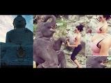 Заблудились в джунглях. Слоновья ферма. Биг Будда. Водопад Кату