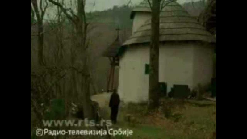 Srbi [i] vukovi