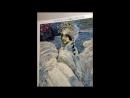 Алмазная мозаика Царевна-лебедь по картине М. Врубеля.