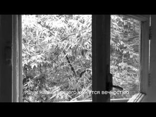 Прятки, 2013, HD-видео, ч/б, стереозвук, 3'30