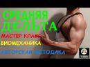 Средняя Дельта 1 Биомеханика Мастер класс в школе фитнеса