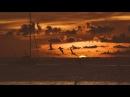 Sunset Mix - Nicolas Jaar, Nu, Chris Schwarzwalder, Frank Wiedemann