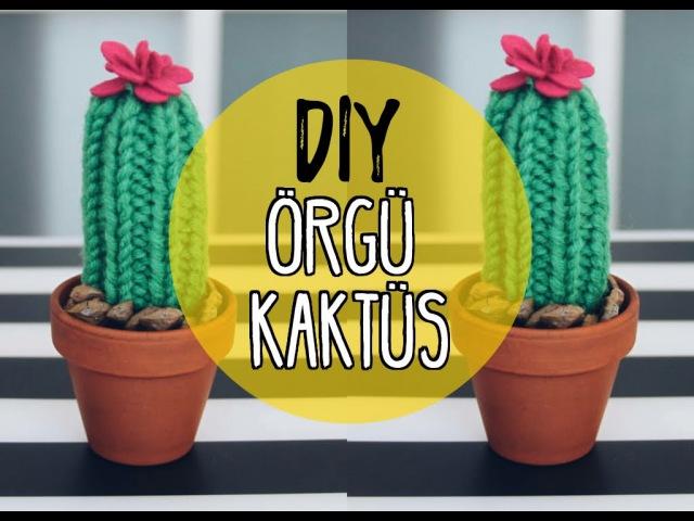 Kendin Yap Örgü Kaktüs DIY Cactus