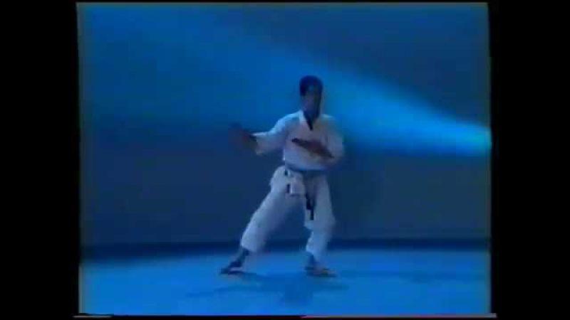 Все ката каратэ сётокан (Шотокан) по версии JKA