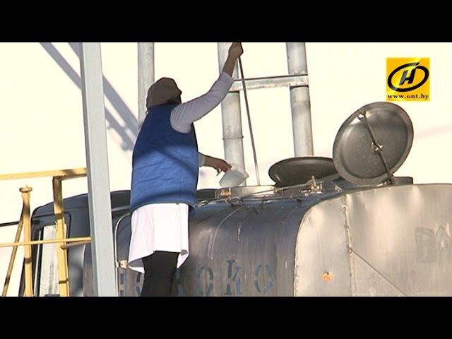 Городокскому району предлагают возить молоко в Глубокое
