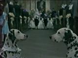101 далматинец (ОРТ, 1.05.2001)