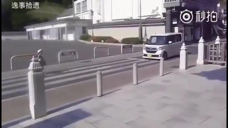Когда культура на дороге - не пустые слова)