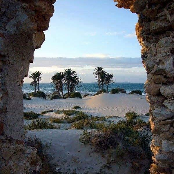 Тур в Тунис в декабре «все включено» в отель 4* со спа всего за 14100 рублей с человека