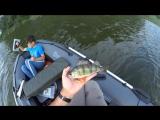 Почему не стоит брать гаджеты на рыбалку by