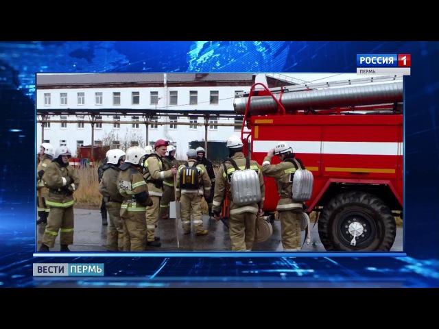 Из соликамского рудника эвакуировали 287 шахтеров