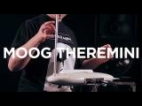 Moog Theremini Tutorial with thereminist Lydia Kavina