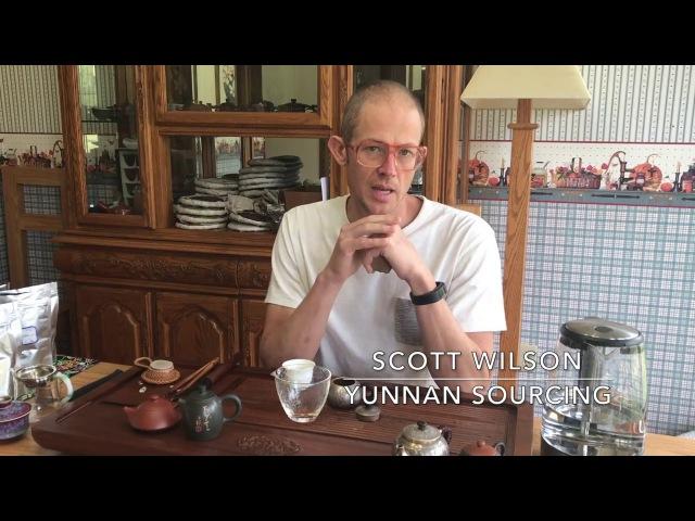 Drinking the 2011 Yunnan Sourcing San He Zhai Blended Raw Pu-erh Tea Cake