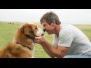Собачья жизнь, 2017 — трейлер — КиноПоиск