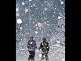 Ласковый Бык - Про Мороз