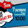 Телеканалы Viasat Russia