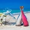Свобода Творчества | Свадьба | Саратов