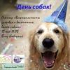 День собак в Томске
