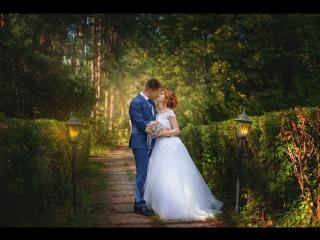 Роман Элона - Sweet wedding day