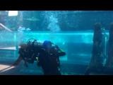 Это я с аквалангом