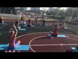 Крокус Фитнес гармония