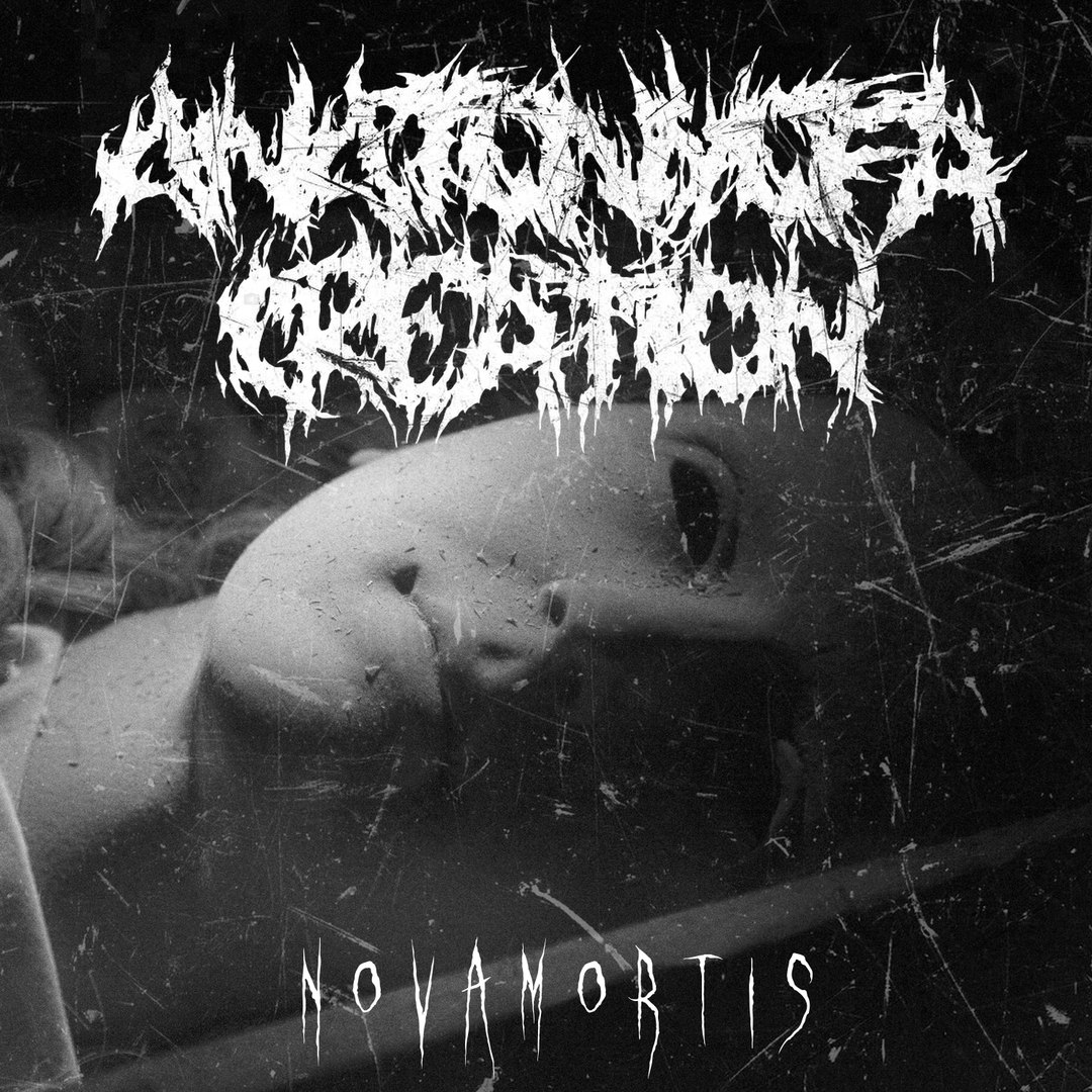 Anatomy of a Creation - Nova Mortis [EP] (2017)