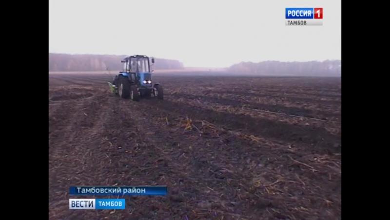 Посадка плодовых деревьев в селе Кузьмино-Гать Тамбовского района Тамбовской области