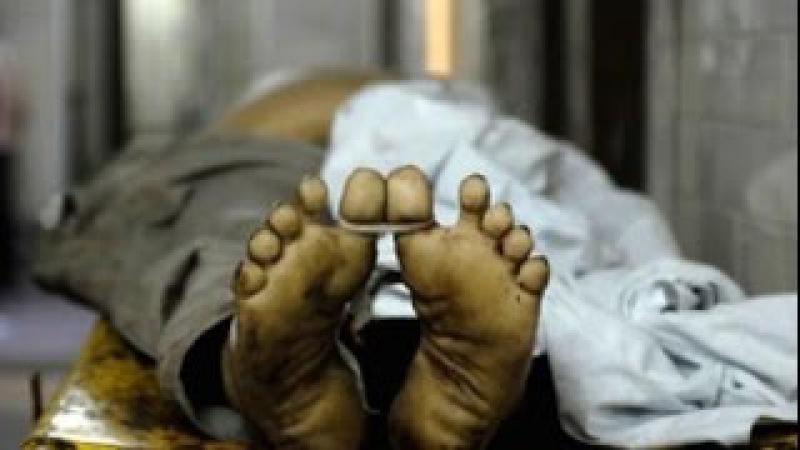 В Египте ожившие мумии вырвались на свободу, ЭКСКЛЮЗИВ