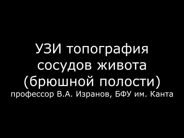 УЗИ топография сосудов живота брюшной полости - meduniver.com