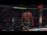 Paul Daley vs Lorenz Larkin KO 23.09.2017 Bellator 183