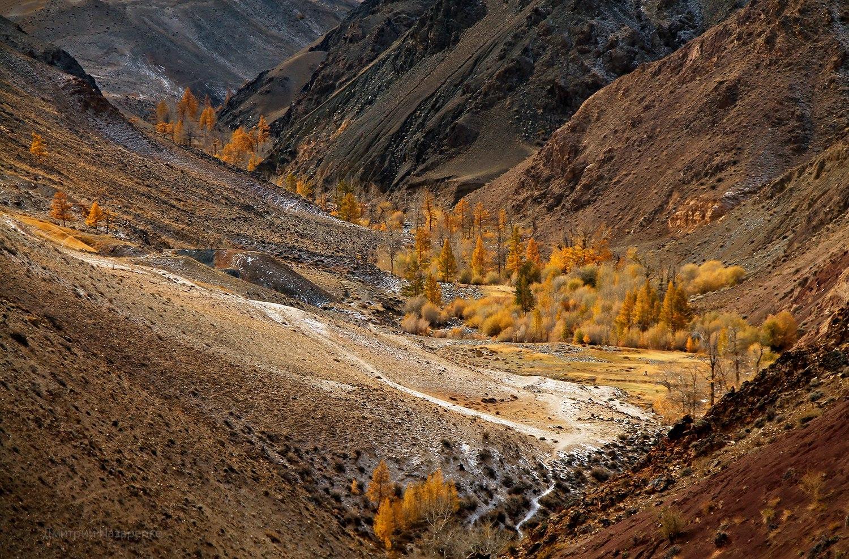 Алтайские горы интересные факты