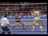 Marco Antonio Barrera vs. Esteban Rodriguez