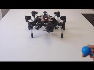Технологии 21 века ( Робот-паук)
